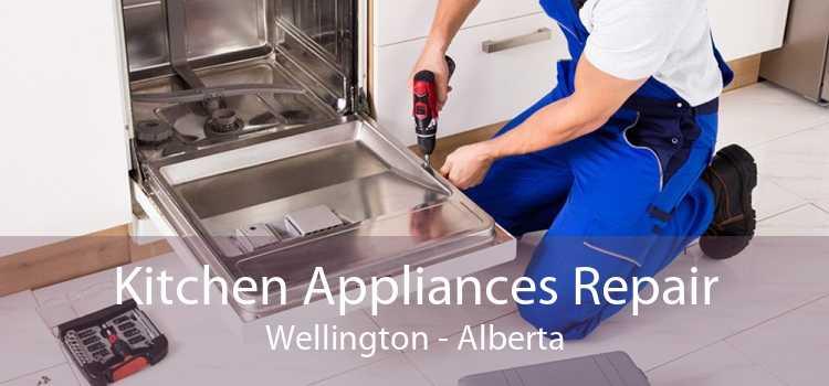 Kitchen Appliances Repair Wellington - Alberta