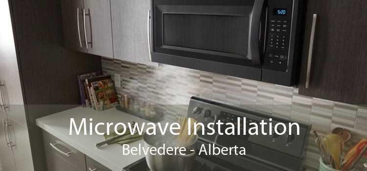 Microwave Installation Belvedere - Alberta