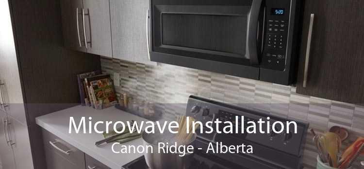 Microwave Installation Canon Ridge - Alberta