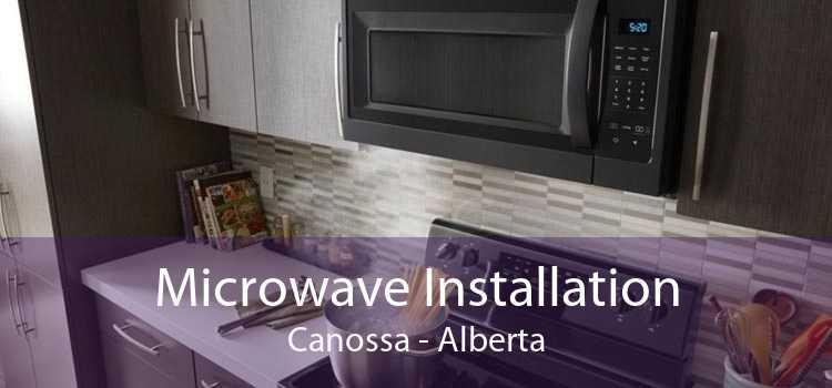 Microwave Installation Canossa - Alberta