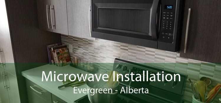 Microwave Installation Evergreen - Alberta