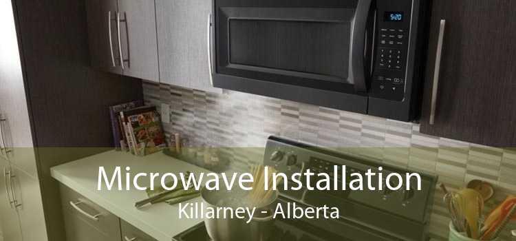 Microwave Installation Killarney - Alberta