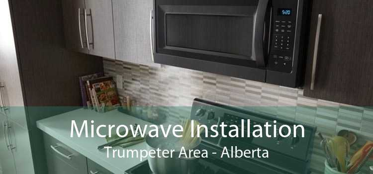 Microwave Installation Trumpeter Area - Alberta