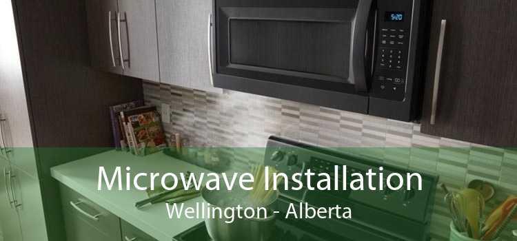 Microwave Installation Wellington - Alberta