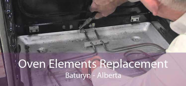 Oven Elements Replacement Baturyn - Alberta