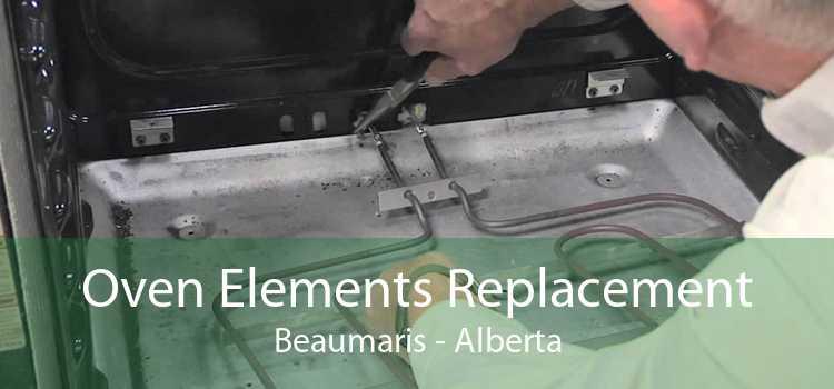 Oven Elements Replacement Beaumaris - Alberta