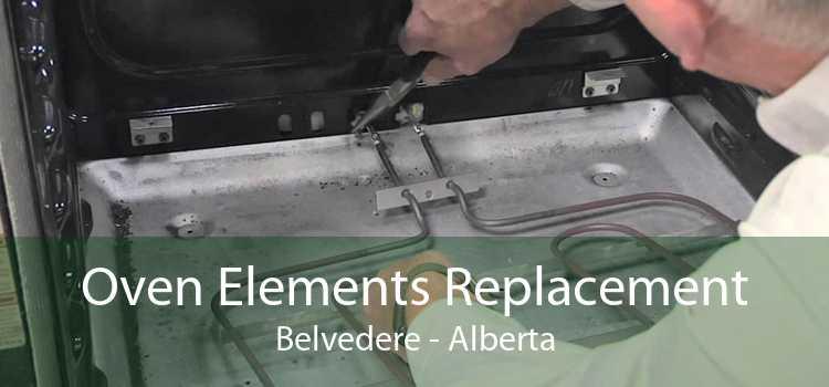 Oven Elements Replacement Belvedere - Alberta