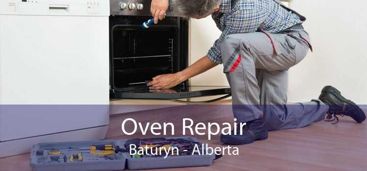 Oven Repair Baturyn - Alberta