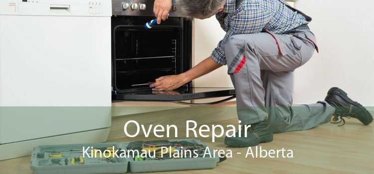 Oven Repair Kinokamau Plains Area - Alberta