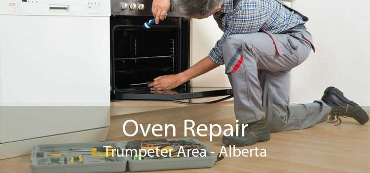 Oven Repair Trumpeter Area - Alberta