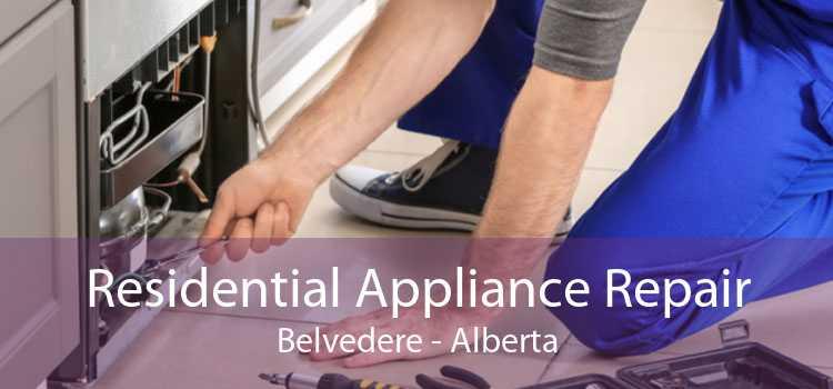 Residential Appliance Repair Belvedere - Alberta