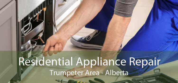Residential Appliance Repair Trumpeter Area - Alberta