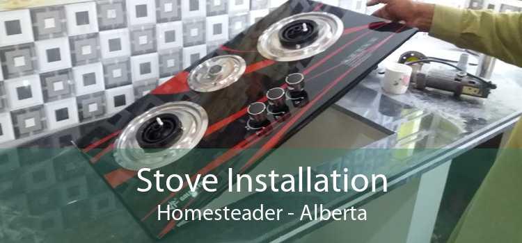 Stove Installation Homesteader - Alberta