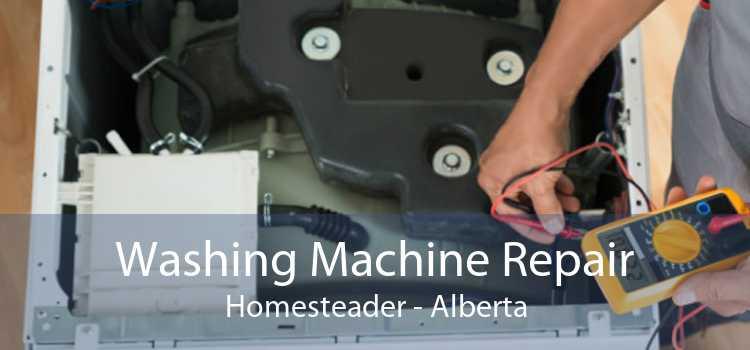 Washing Machine Repair Homesteader - Alberta