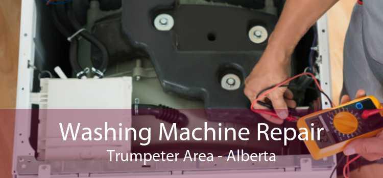 Washing Machine Repair Trumpeter Area - Alberta